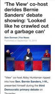 View disparages Sander's appearance 3rd debate
